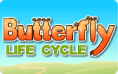 Butterfly Life Cycle: Grades K-2